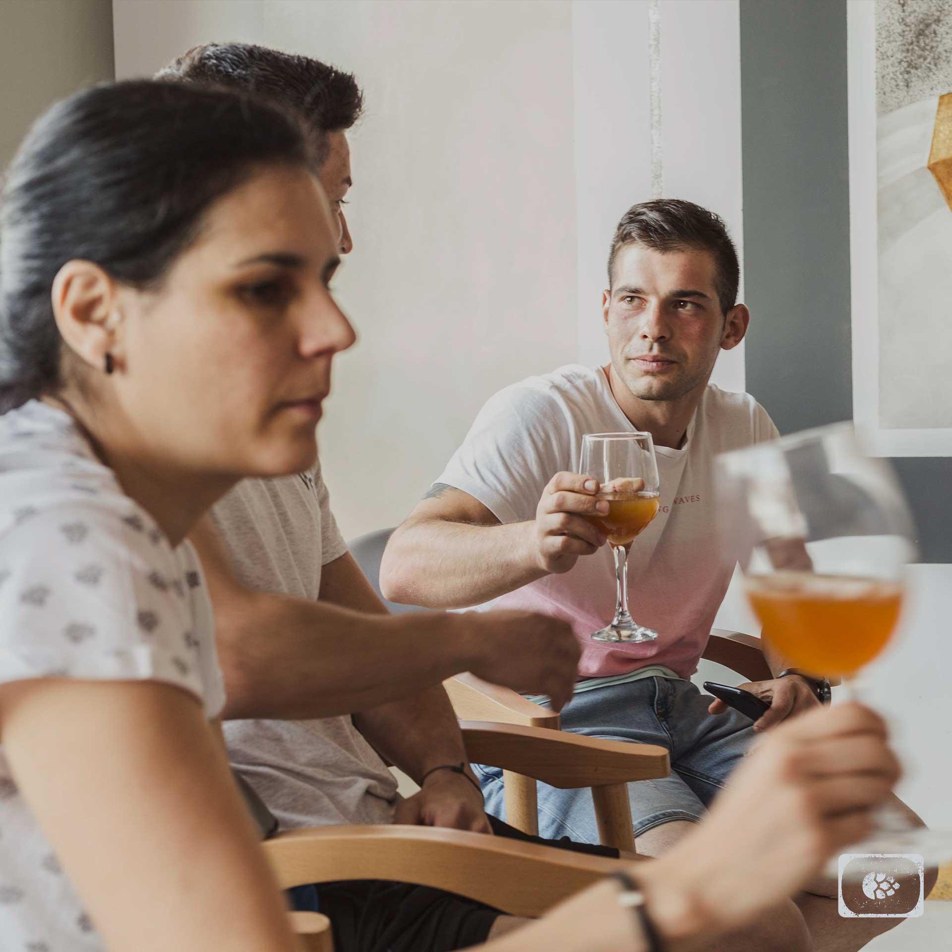 Cerveza Artesana Online Abaceria