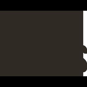 Cerveza Domus logo